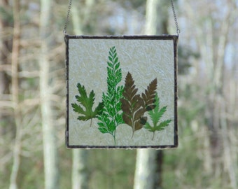 Pressed leaves in glass, stained glass wall art, preserved leaves terrarium, botanical leaf art