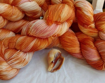 Hawkwing Conch, sock yarn