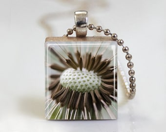Dandelion Flower Floral Photography - Scrabble Tile Pendant - Free Ball Chain Necklace or Key Ring