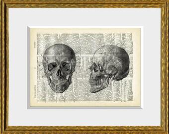 HUMAN SKULL - Dictionary Art Print- upcycled antique dictionary page with a retooled antique human anatomy illustration - wall art