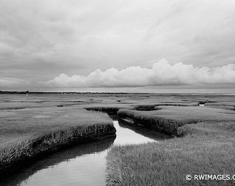 Large Wall Art (Fine Art Paper, Canvas, Framed, Metal or Acrylic Print) Cape Cod Landscape Fine Art Photography Black and White