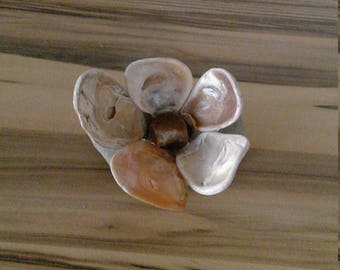 Flower of stones and mussels