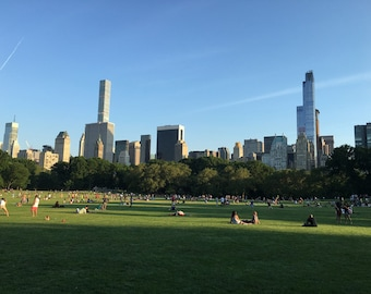 Sheep Meadow in Central Park 2