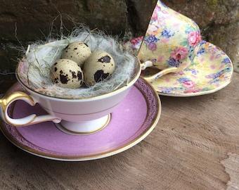 Birds Nest, Summer decoration, spring table decoration, kitchen dresser, wedding, Welsh dresser. Easter