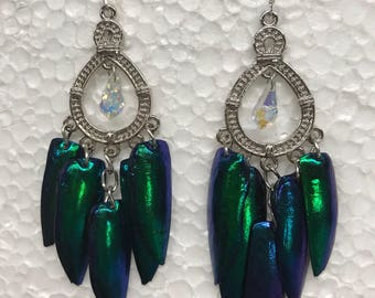 Ornate Beetle Exoskeleton Earrings