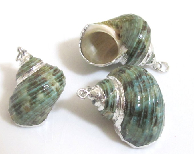 1 Pendant - Silver plated green turbo spiral shell pendant - 1 piece - SP040