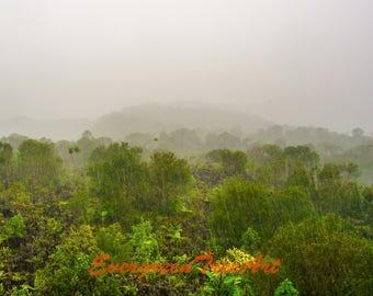 Heavy tropical rain, Costa Rica, print