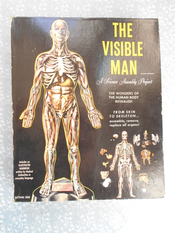 The Visible Man 1959 Introduction to Anatomy game vintage