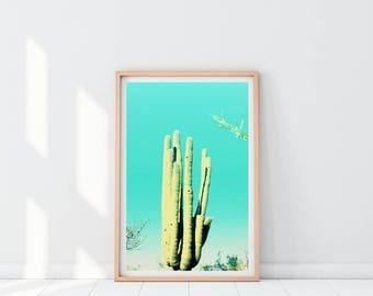 Cactus Mint Green, Cactus photo, Arizona Desert print, Southwestern print, Cactus poster, Cactus decor, Cacti Print, Desert Decor
