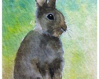 Rabbit Art Print  8X6 inch #97