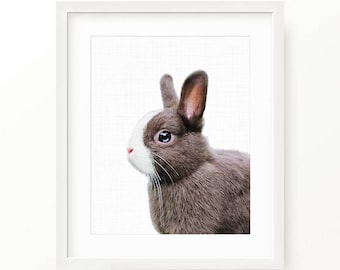 Nice Bunny Print, Rabbit Print, Blue Eyes Bunny, Nursery Decor, Animal Prints, Bunny Photo, Rabbit Portrait, Nursery Wall Art, Modern Art