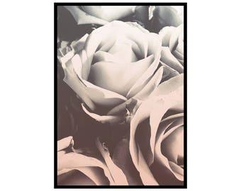 Printed 'ROSE' wallart