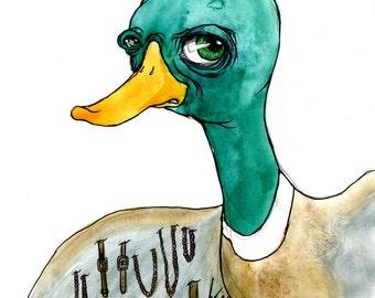 Shady Duck