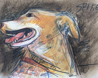 This is Spike. You would be ordering a custom sketch of your dog.