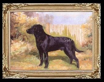 Black Labrador Dog Miniature Dollhouse Art Picture 6149