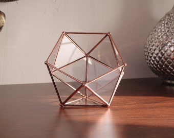 Petit terrarium verre. Boîte à bijoux. Boîte anneaux. Icosaèdre. Géométrique. Plante. Cactus. Décor table. Cadeau. Mariage.