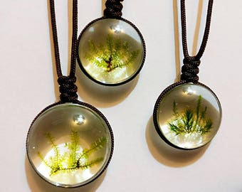 Flora necklace - actual mosses - mothers day