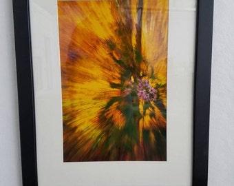 Autumn's Burst in contemporary framing