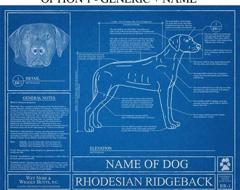 Personalized dog blueprints custom pet by wetnosewigglybutts personalized rhodesian ridgeback blueprint rhodesian ridgeback art rhodesian ridgeback wall art rhodesian ridgeback gift malvernweather Images