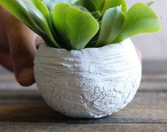 Decor for girls room Ceramic planter, Succulent planter,Ceramics & pottery, Planter flower pot, Flower plant pot White pots Clay pots 5.0 oz