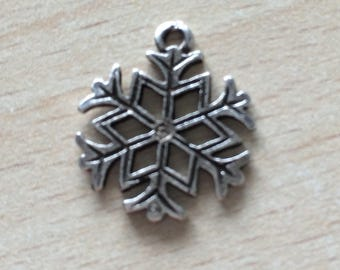 Snowflake the charms in silver