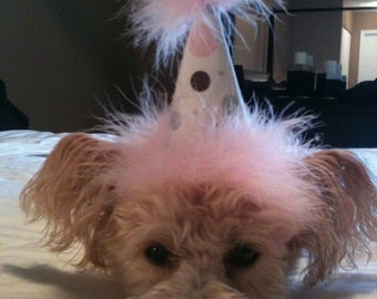 Adorable Birthday Dog Puppy Party Hats