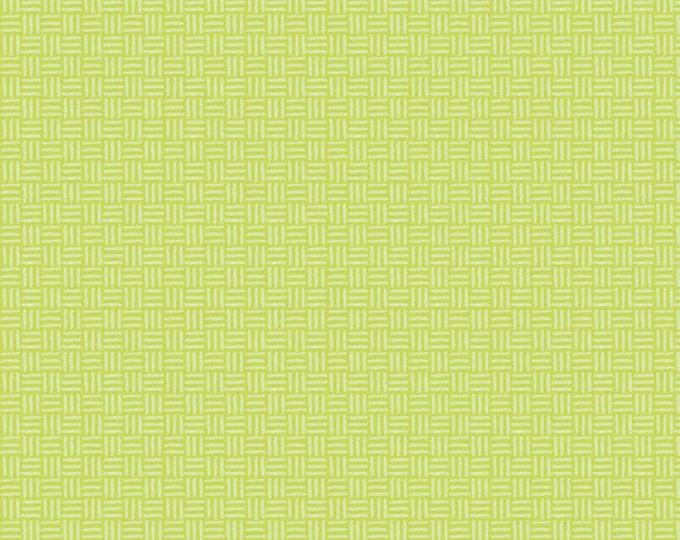 Half Yard Bugs - Hatchmarks in Green - Cotton Quilt Fabric - by Jone Hallmark for Blend Fabrics (W1835)