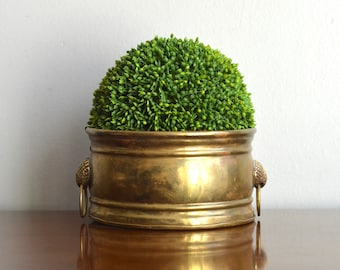 Vintage Brass Planter Container Succulent Pot Shell Handles Garden Planter Coastal Nautical Brass Decor