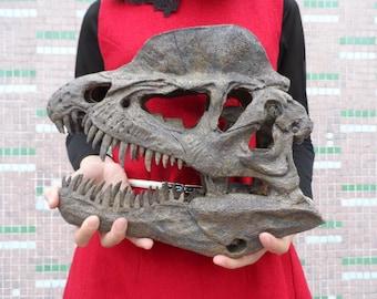 29 CM,Dilophosaurus Model / Dinosaur Skull Model SJL-001