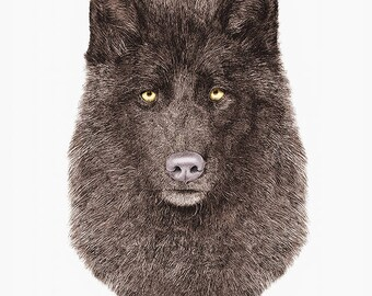 BLACK WOLF Art Print, Animal Crew, Wolf Illustration