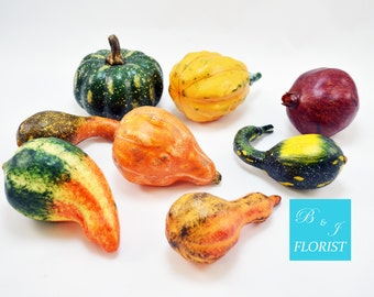 Set of 8 Fall Gourds and Pumpkin - Artificial Harvest - Assortment - Fall Home Decor
