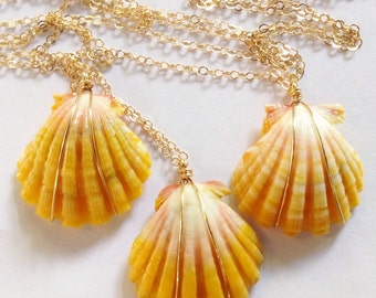 Hawiian sunrise shell necklaces on gold or silver