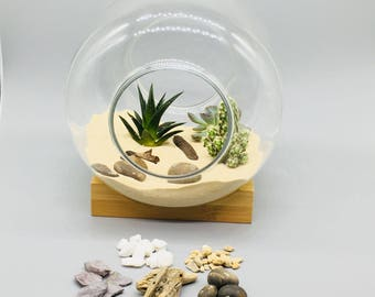 Terrarium Kit with Glass Container&Wooden Base