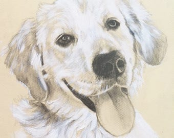 Dog Sketch Custom Dog Portrait, 8x10
