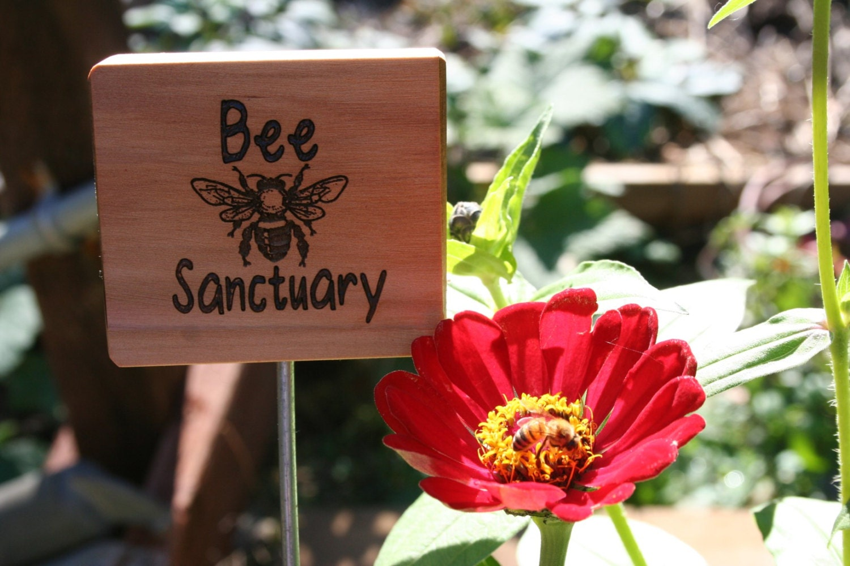 Bee Sanctuary Sign Cedar Wooden Natural Garden