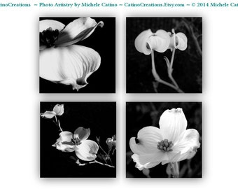 Dogwood Blooms Photo Set of Four Prints Black and White Floral, Blooms, Flowers, Petals, Asian Inspired Photography Botanical Blossoms set