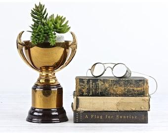 Trophée Vintage coupe vieux trophée trophée d'or Vintage Vintage Sports Car Club de 1950 ' s trophée Amérique trophée détenteur du Trophée rétro succulentes