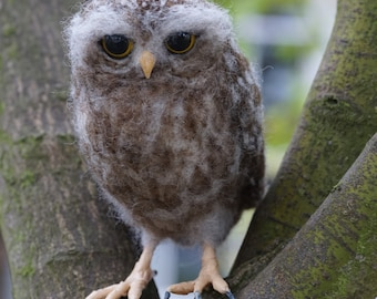 Needle Felt Little Owl Bird Sculpture