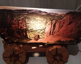 very cool  cactus covered wagon lamp!