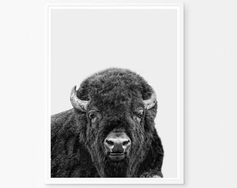 Southwestern decor, Buffalo Print, Bison Print, Nursery Print, Animal Print, Nursery Poster, Buffalo Poster, Bison Wall Art, Animal Poster,