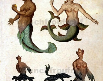 antique mermaid merman sea monsters lithograph