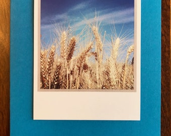 Wheat Field Notecard