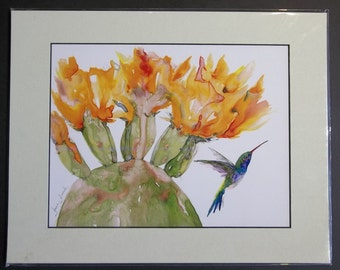 Prickly Pear Cactus Flowers with Humming Bird, 11x14 matted print by June Jurcak