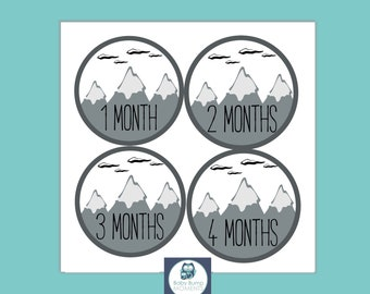 Printable Milestone Stickers, Monthly Baby Stickers, Digital, PDF, Baby Month Stickers, Growth Stickers, Will Move Mountains, Gray, Unisex