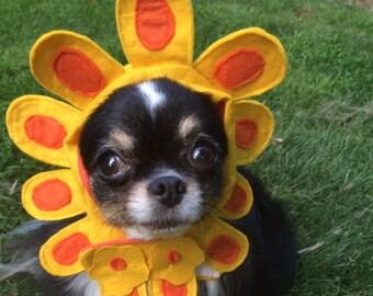Dog Flower hat-Dog Sunflower Costume - Cat Flower Hat-Cat Sunflower Costume -Dog Sunflower hat - Cat Sunflower Hat-The Late Bloomer