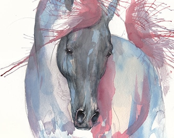 Arabian horse, equine art, equestrian, horse portrait, original watercolor painting