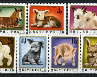 Cute, Baby, Farm Animals - Puppy, Kitten, Lamb, Calf, Pony, Piglet, Rabbit - Stamps from 1978