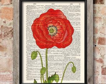 Flower print, Red poppy, Dictionary art print, Botanical print, Flowers art print, Illustration print, Wall Decor, Gift poster [ART 034]