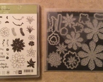Stampin Up Oh So Succulent  - New