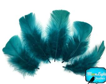 Turkey Feathers, 1/4 lbs - PEACOCK BLUE Turkey T-Base Plumage Wholesale Feathers (bulk) : 3881